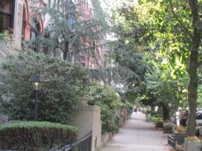 One of Brooklyn's Greenest Blocks - Leffertsmanor.org